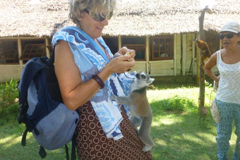 Dom-avec-un-lemuriens