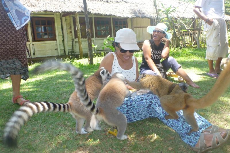 Les-lemuriens